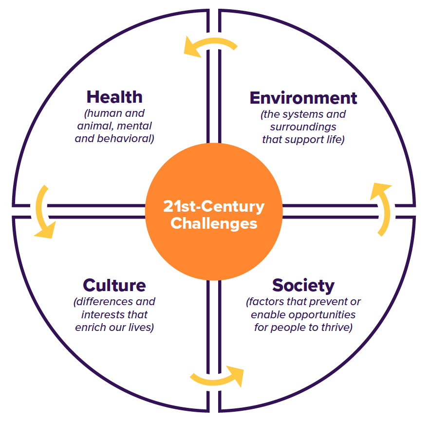 Health, Environment, Culture and Society are all 21st-century challenges UC Davis is addressing in a multidisciplinary fashion.
