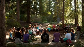 Gathering in Redwood Grove
